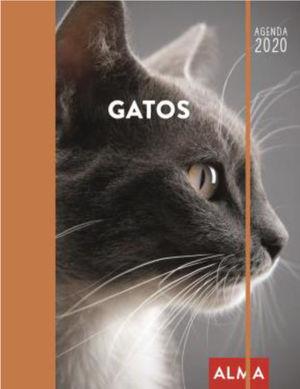 AGENDA 2020 GATOS