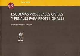 ESQUEMAS PROCESALES CIVILES Y PENALES PARA PROFESIONALES T.XLVII