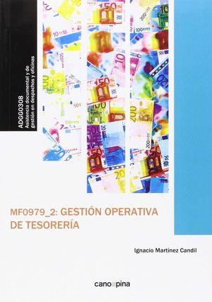 MF0979 GESTIÓN OPERATIVA DE TESORERÍA