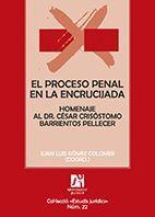 EL PROCESO PENAL EN LA ENCRUCIJADA (2 VOLS.)