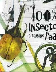 100% INSECTOS A TAMAÑO REAL