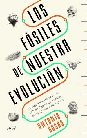 LOS FÓSILES DE NUESTRA EVOLUCIÓN