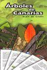 ÁRBOLES DE CANARIAS. GUÍA DE CAMPO. CATÁLOGO