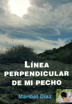 LINEA PERPENDICULAR DE MI PECHO