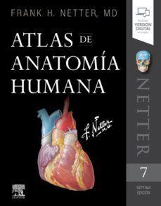 NETTER. ATLAS DE ANATOMÍA HUMANA 7 EDICIÓN
