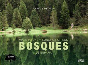 VIAJE VISUAL Y SONORO POR LOS BOSQUES DE ESPAÑA