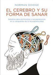 EL CEREBRO Y SU FORMA DE SANAR