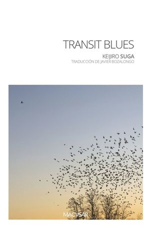 TRANSIT BLUES