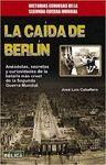 CAIDA DE BERLIN