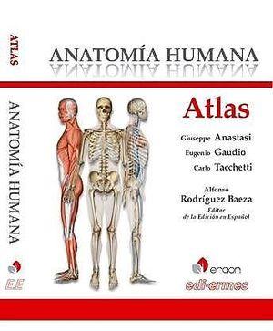 ATLAS. ANATOMÍA HUMANA