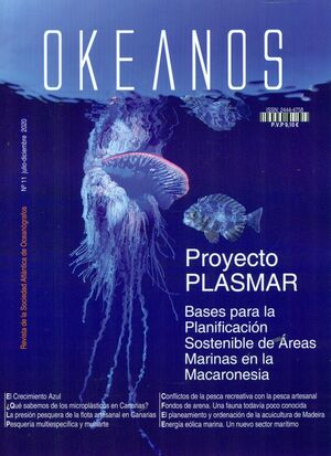 OKEANOS N.11 PROYECTO PLASMAR